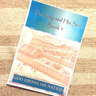 Health Reporter: The King & His Son Book 3 - God Grows His Nation