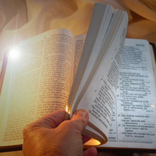 Search the Bible for Vital Truths for the End Times of the World