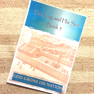 Health Reporter: The King & His Son - Book 3 - GOD GROWS HIS NATION