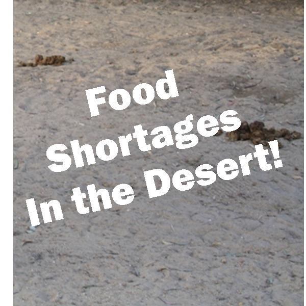 A desert with no food in sight